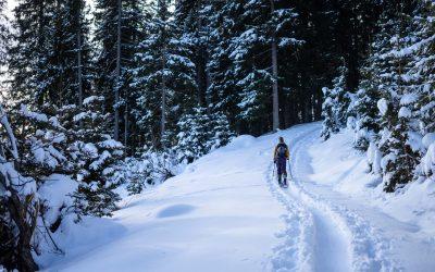 Auf Skitour vor dem ersten großen Schnee.